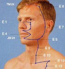 meridiano de acupuntura